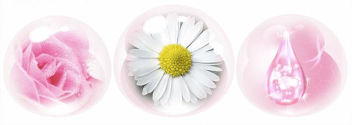 Collagen, tinh chất hoa hồng, thảo mộc giúp chăm sóc dịu nhẹ và làm đẹp vượt trội cho da