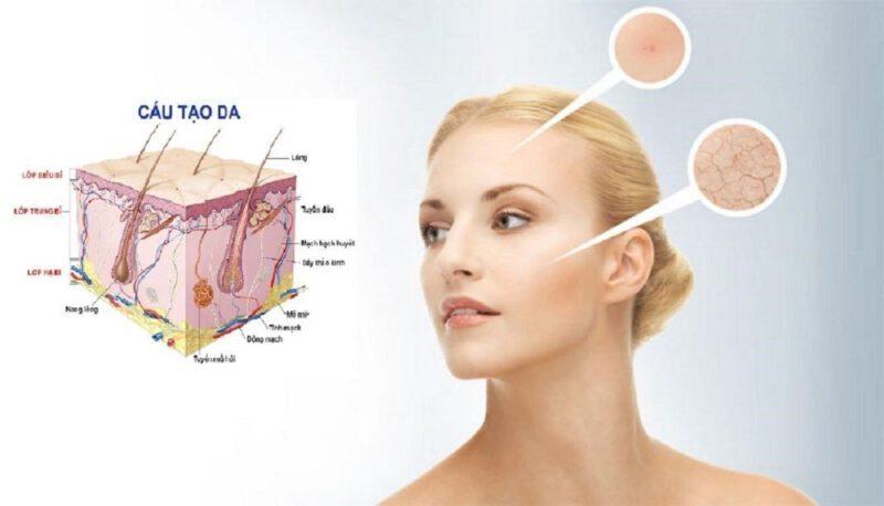 Cấu trúc da mặt -khi nào nên dùng sữa rửa mặt