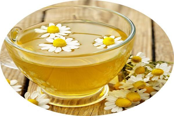 Cúc La Mã thành phần không những nổi tiếng trong làm dịu còn có tính kháng viêm - kem trị mụn dưỡng da