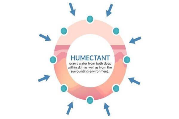 Được sử dụng như một humectant giúp dưỡng ẩm hiệu quả cho da mụn