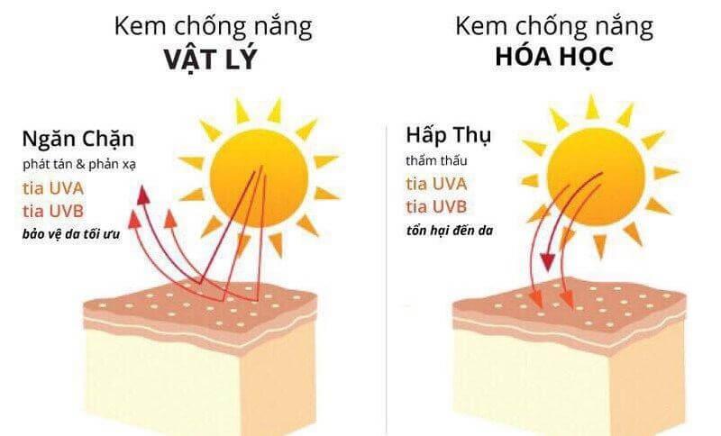 Kem chống nắng vật lý và Kem chống nắng hóa học.