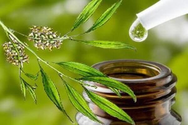 Một loại dầu tự nhiên lành tính tuy nhiên cũng có thể gây kích ứng khi không sử dụng đúng cách