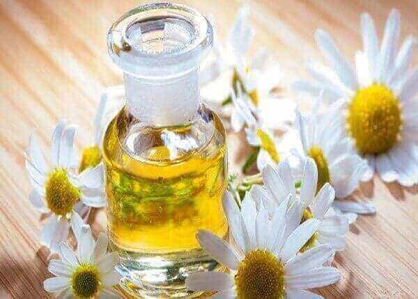 Nếu bạn có làn da mụn, nhạy cảm thì đừng nên bỏ qua thành phần kháng viêm này từ hoa cúc